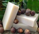 Soapnuts Shampoo